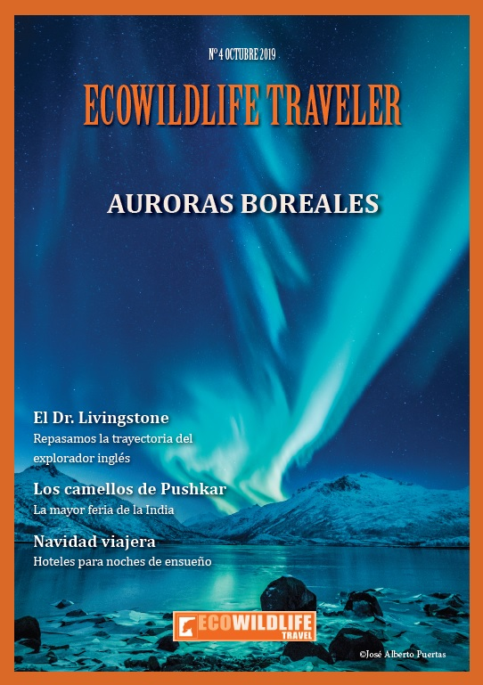 Ecowildlife Traveler 4