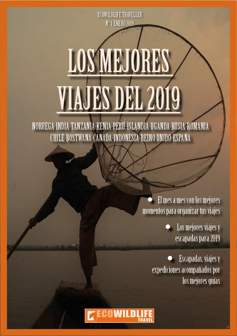 Revista de Viajes 2019