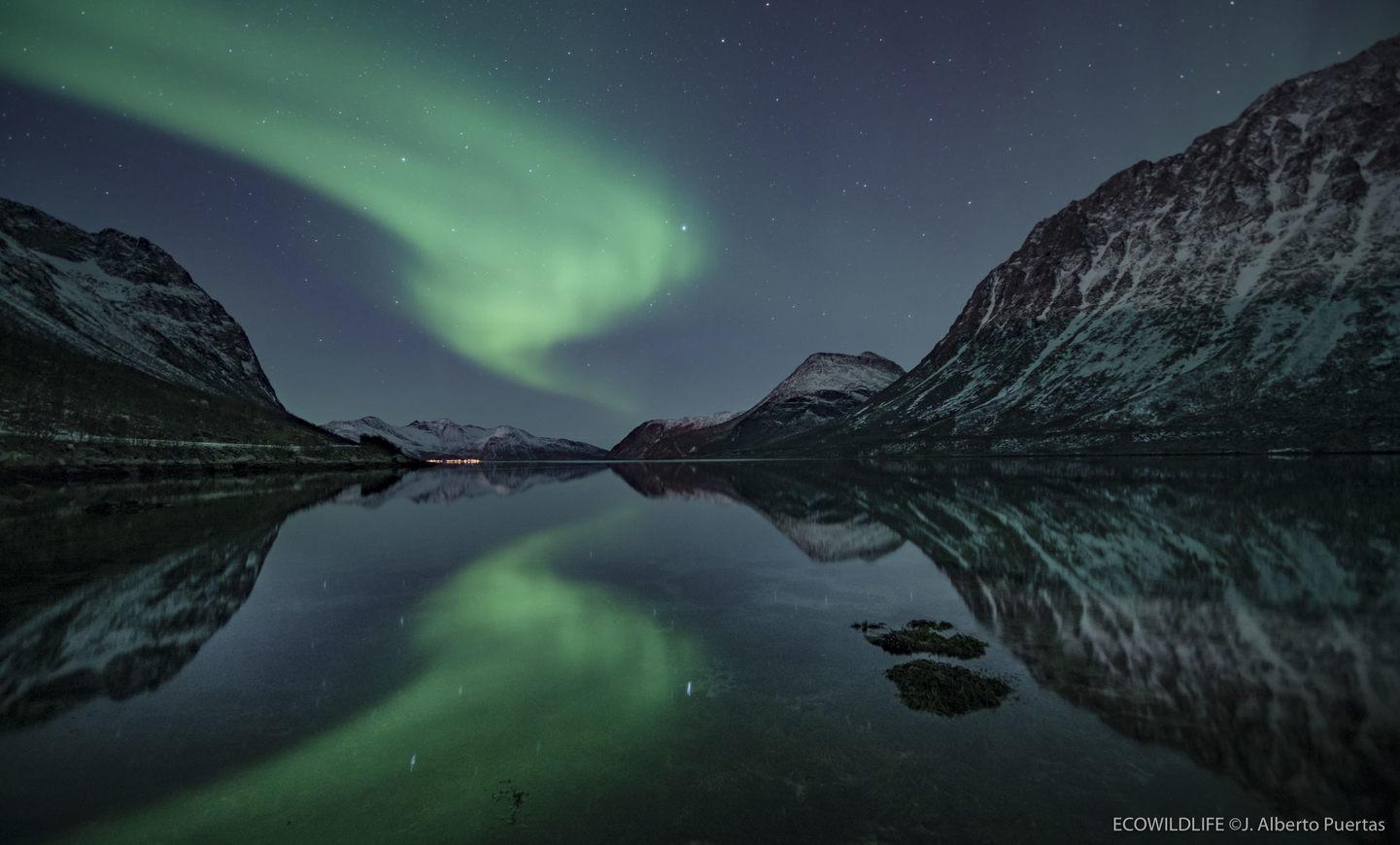 Noruega: Auroras, Ballenas y Paisajes