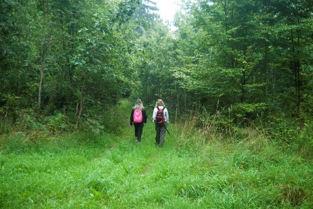 Polonia: Parques Nacionales