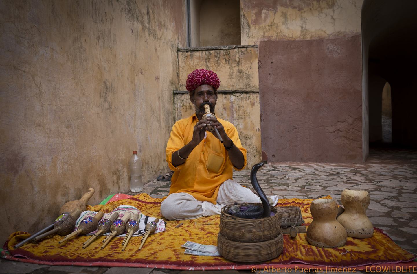 India: Miradas de la India