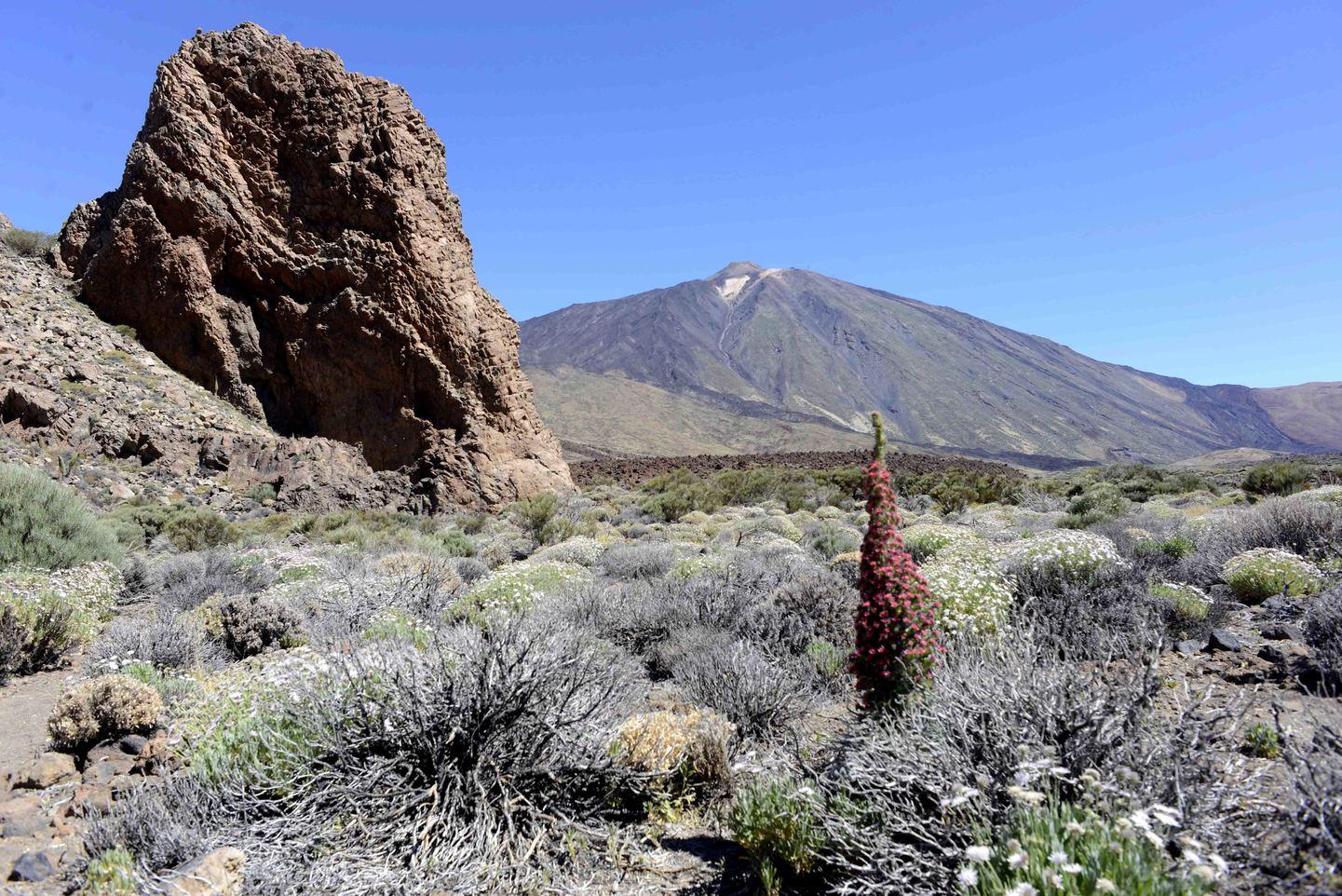 Islas Canarias: Los Cielos de Colón
